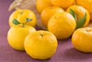 香柚セラミド